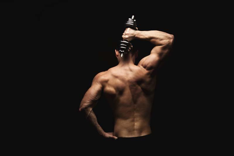 Mehr über den Muskelaufbau erfahren