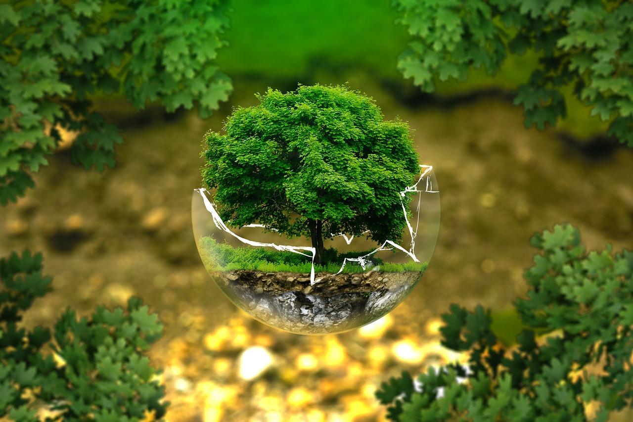 Umweltschutz auch bei der Papierherstellung wichtig